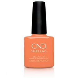 CND - Shellac Catch Of The Day